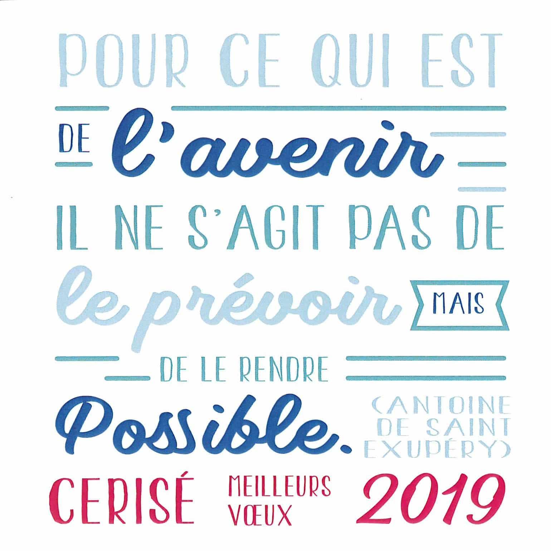 Vœux du Maire 2019